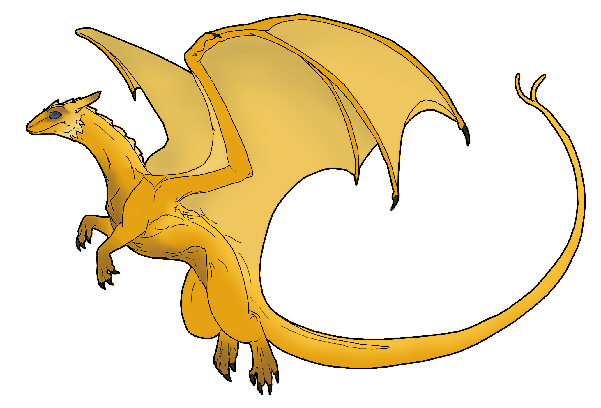 ColoredDragon.png