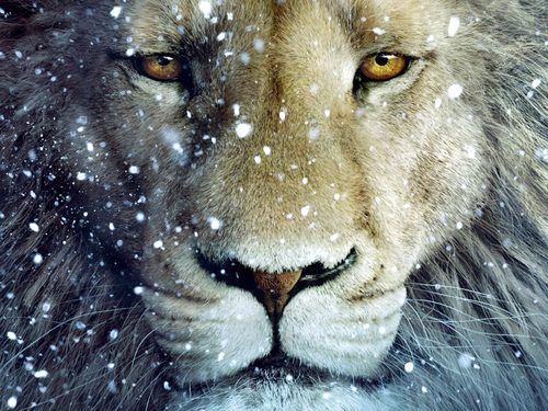 Aslan-Lion-3-The-Chronicles-of-Narnia-Wallpaper.jpg